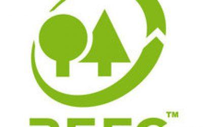 """Giornata Internazionale delle Foreste: PEFC Italia e Legambiente lanciano il premio """"Comunità Forestali Sostenibili"""""""