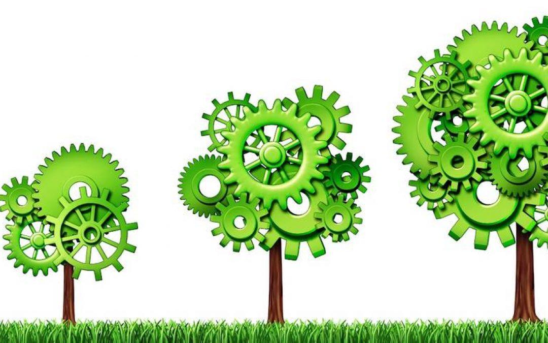 La sostenibilità conviene alle aziende?