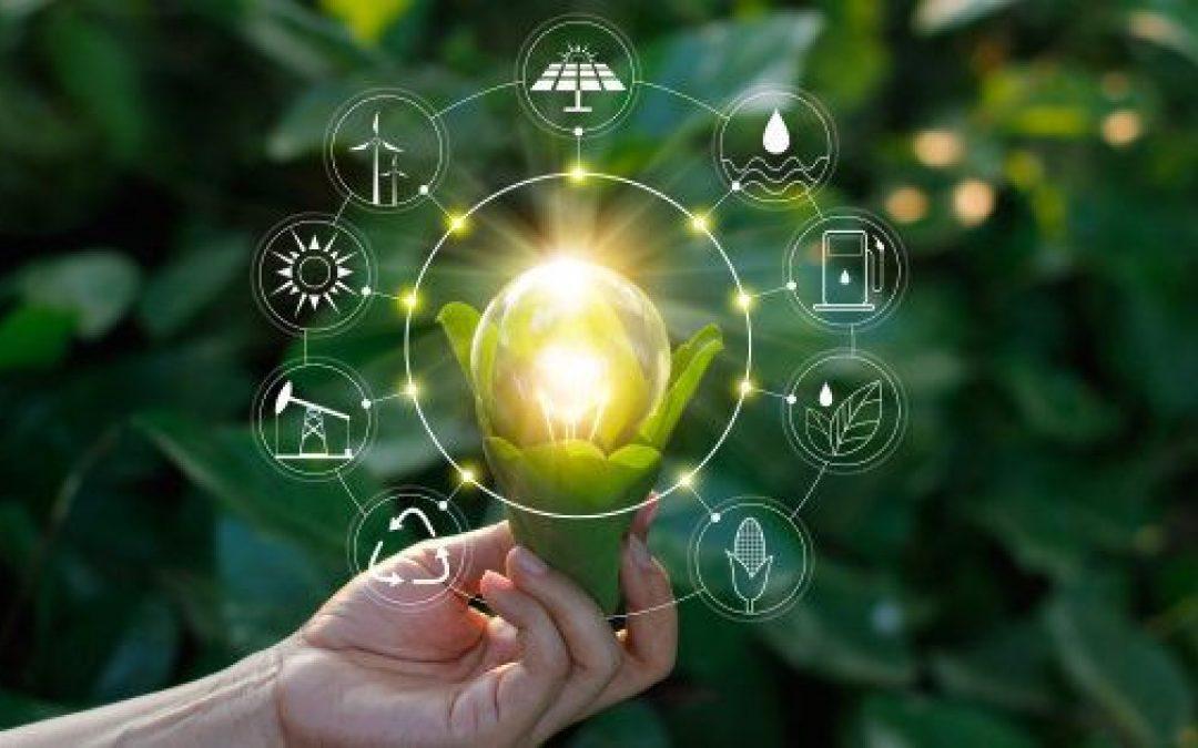 Quanto costa diventare sostenibili?